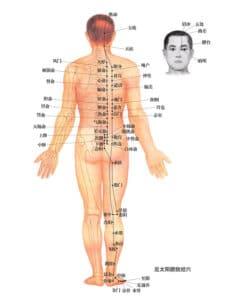 Blasenmeridian Rückenschmerzen