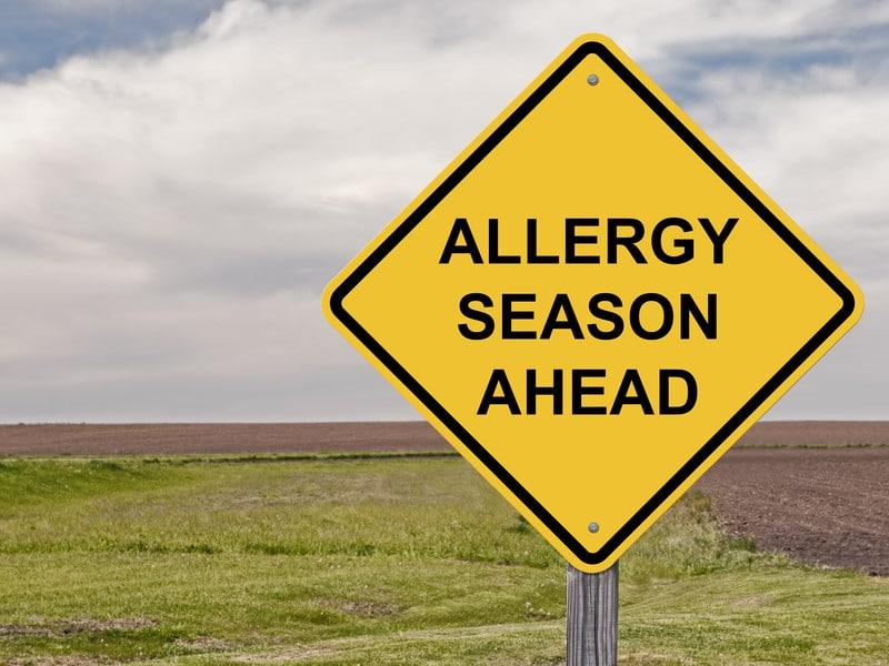 Allergien Heuschnupfen