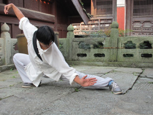 Qi Gong Taiji Wudang.jpg