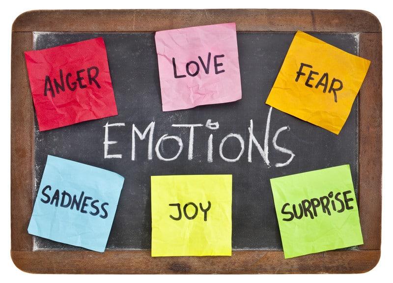 sieben Emotionen - 9 Palaces TCM - Akupunktur
